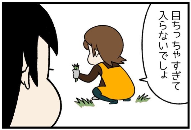 どんぐりの性格シリーズ「チワワじゃあるまいし」4。続きを読むときは画像をクリック!