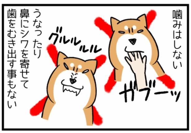 どんぐりの性格シリーズ「怒りの方向性」3。続きを読むときは画像をクリック!