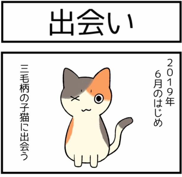 猫のたんぽぽシリーズ「出会い」1。続きを読むときは画像をクリック!