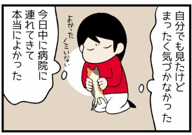 猫のたんぽぽシリーズ「当日中の勧め」4。続きを読むときは画像をクリック!