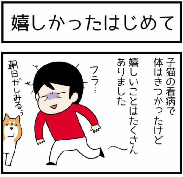 猫のたんぽぽシリーズ「嬉しかったはじめて」1。続きを読むときは画像をクリック!
