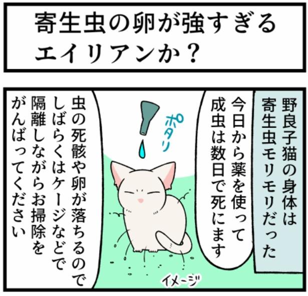 猫のすずらんシリーズ「寄生虫の卵が強すぎるエイリアンか?」1。続きを読むときは画像をクリック!