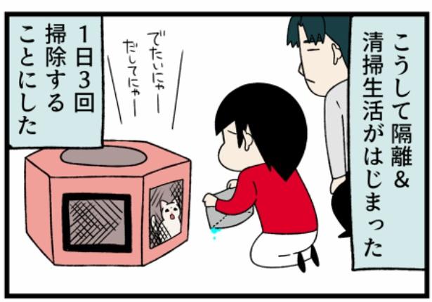 猫のすずらんシリーズ「寄生虫の卵が強すぎるエイリアンか?」4。続きを読むときは画像をクリック!