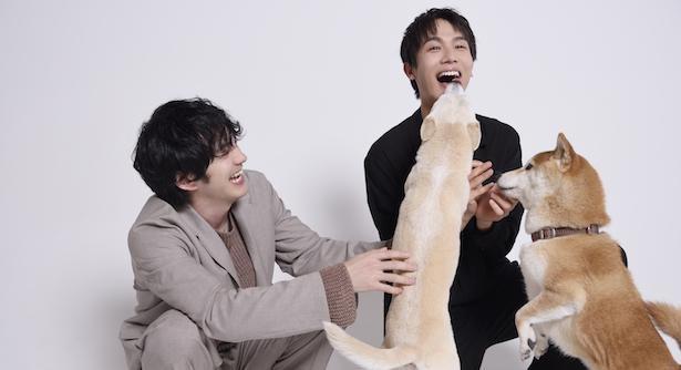【写真】颯太の相棒犬の花子役「ちえちゃん」、柴崎の相棒犬の太郎役「きぃくん」とじゃれ合うふたり