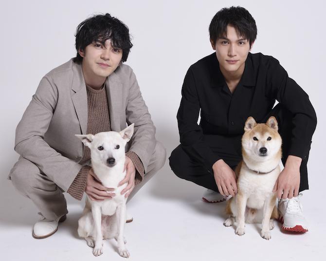 映画『犬部!』出演の林遣都と中川大志「動物保護活動の役に立てるのであれば」
