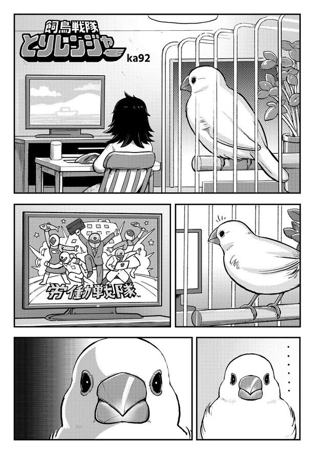 「飼鳥戦隊とりレンジャー」01