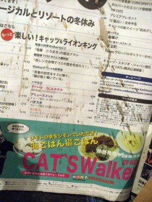 ネコ関係の記事満載の目次になってます!