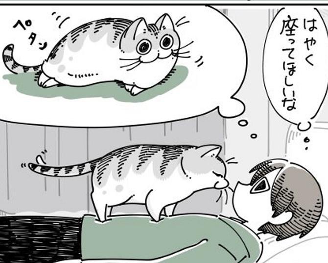"""愛猫の「重さ」も「くすぐったさ」も愛おしい…飼い主のお腹の上を""""探検""""するネコ漫画に共感の嵐"""