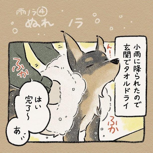 「ぬれノラ」その1