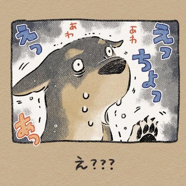 「ぬれノラ」その6 結末はmofumofufufufufuさんのInstagramをチェック!