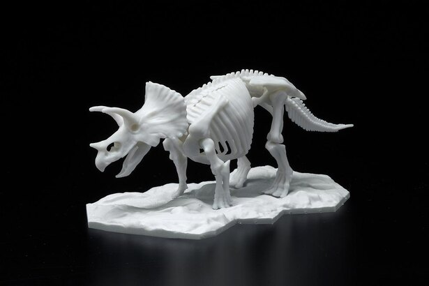 恐竜骨格プラモデル・トリケラトプス