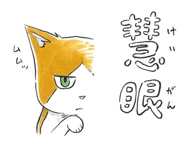 【漫画】猫のコタツと大塚くん《第61話》「慧眼(けいがん)。」