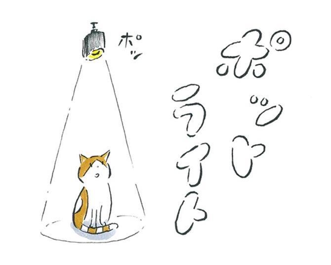 【漫画】猫のコタツと大塚くん《第76話》「ポットライト。」