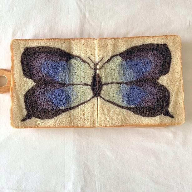 本のように開いて見ることで青のグラデーションが美しい蝶があらわれるイラストパン