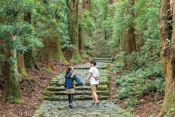 絶景を楽しみながら、森林浴で気分もリフレッシュ/大門坂