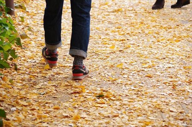 紅葉狩りの際は動きやすい服装や靴を意識しよう