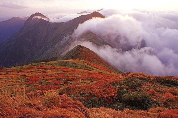 ダイナミックな山並みを紅葉が赤く染め上げる