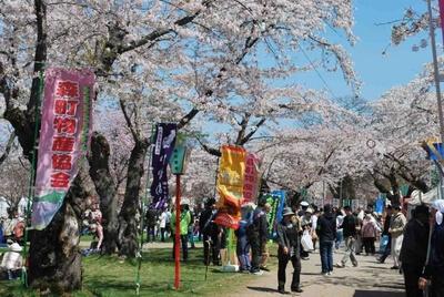もりまち桜まつり過去開催のようす