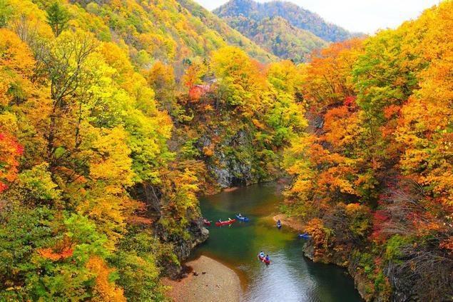 北海道の紅葉名所5選!人気スポットで一足早い絶景を満喫
