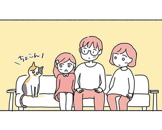 【漫画】環境の変化に戸惑い、なかなか姿を現さない「しらす」。ぎこちなくなりながらも、「いつも通り」に過ごし…/ねこ活はじめました かわいい!愛しい!だから知っておきたい保護猫のトリセツ