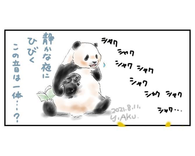【恐怖の実体験】「シャク、シャク…」聞こえるはずのない咀嚼音が暗闇に…その正体は⁉日常を描くパンダ漫画が話題