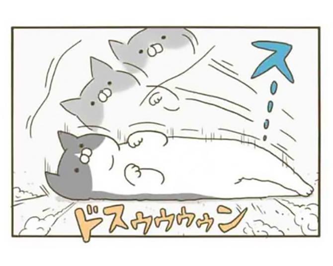 【漫画】猫の中でも性格はさまざま!おもちゃで遊ぶ時の2匹の違い/うちの猫がまた変なことしてる。