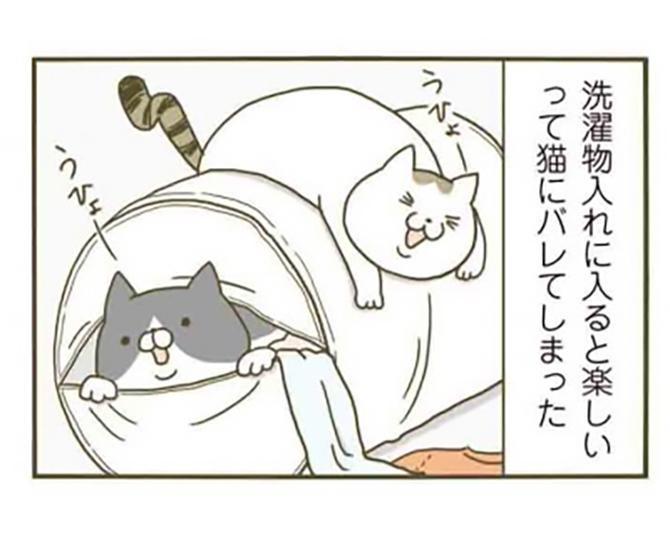 【漫画】洗濯物入れを気に入った猫。遊び用にプレゼントして、新しいものを買った結果…/うちの猫がまた変なことしてる。