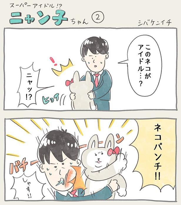 ニャン子ちゃん_2-1