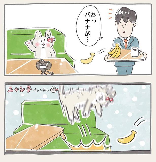 ニャン子ちゃん_9-2