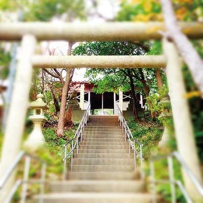 山上に向かって続く階段を上ると、緑に包まれた境内はすがすがしい雰囲気。境内にはご神体のイザナギノミコト、イザナミノミコトの像も/おのころ神社