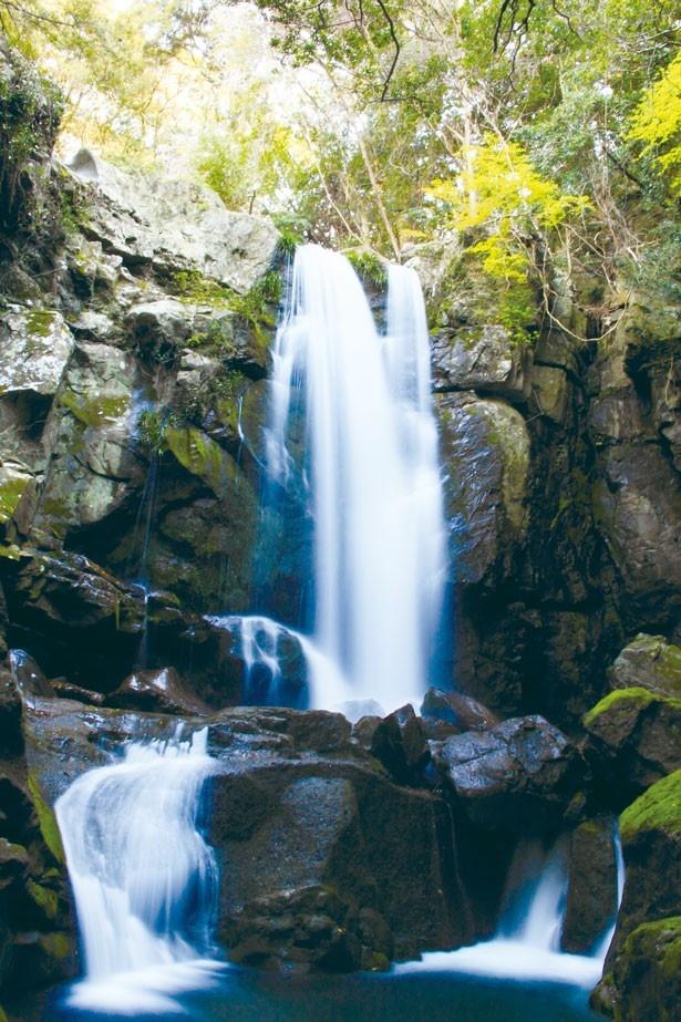 洲本川の源流にある水量豊富な滝。駐車場から滝まで遊歩道を歩いて約5分で行けるのもうれしい/鮎屋の滝