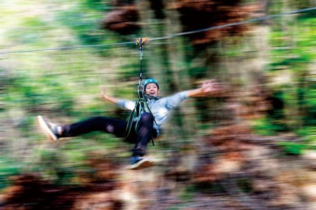 【写真を見る】「森の駅 たるみず」では、木から木へと張られたワイヤーロープを体一つで滑り降りるジップラインが楽しめる