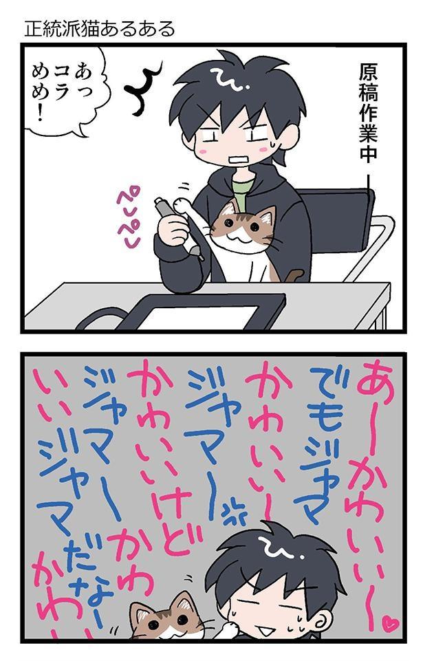 ★初猫物語_006_右1