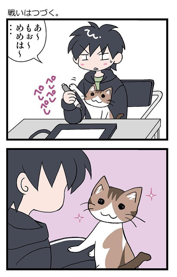 ★初猫物語_006_左1