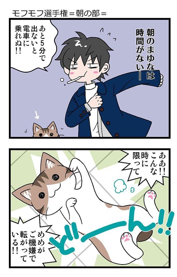 ★初猫物語_021_右1