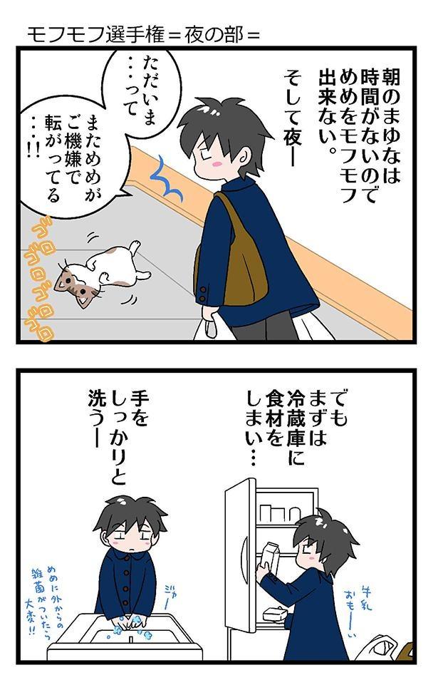 ★初猫物語_021_左1