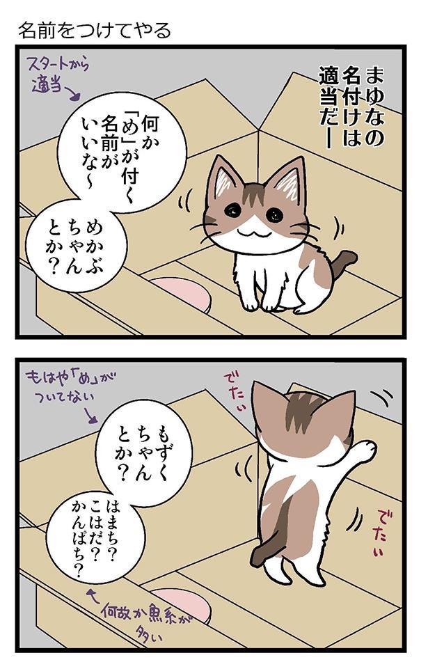 初猫物語_002_左1