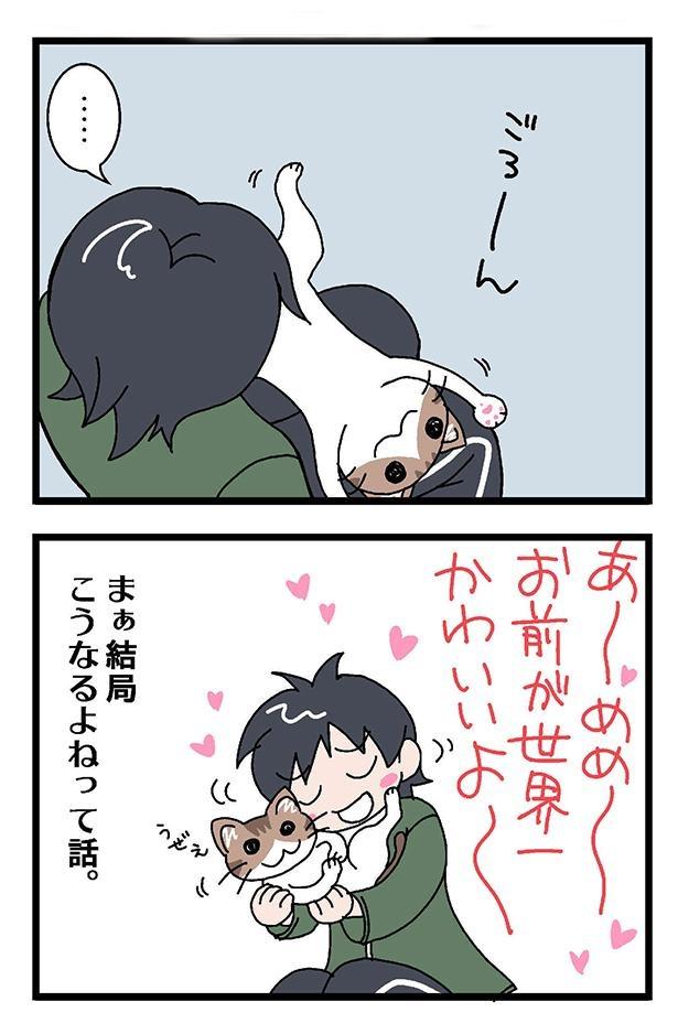 初猫物語_003_右2