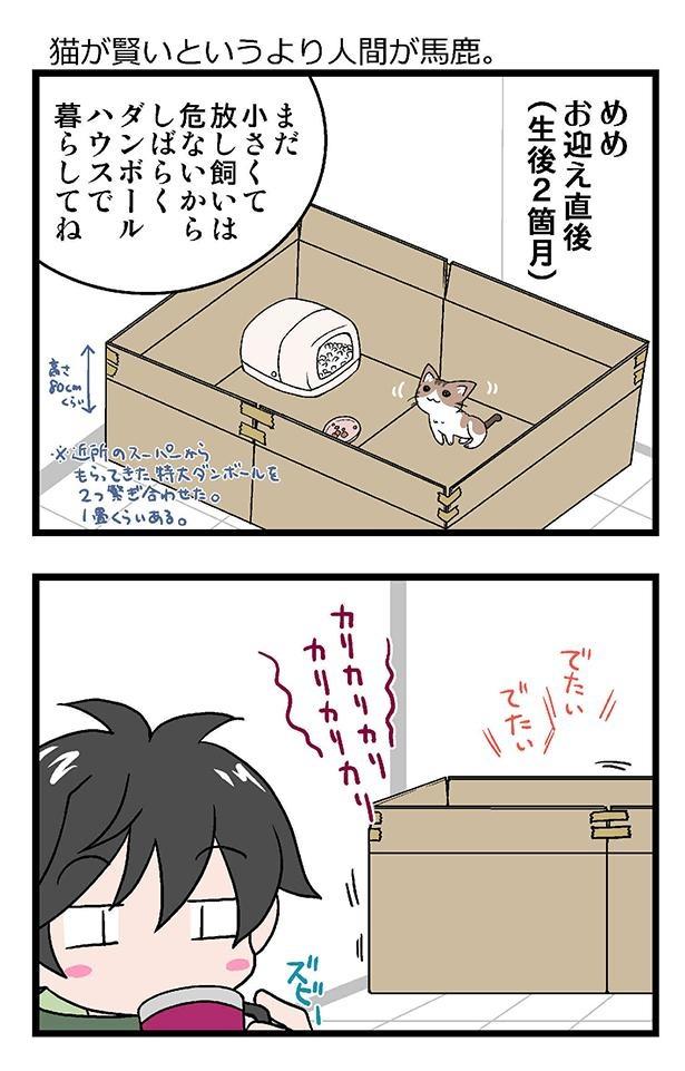 初猫物語_005_右1