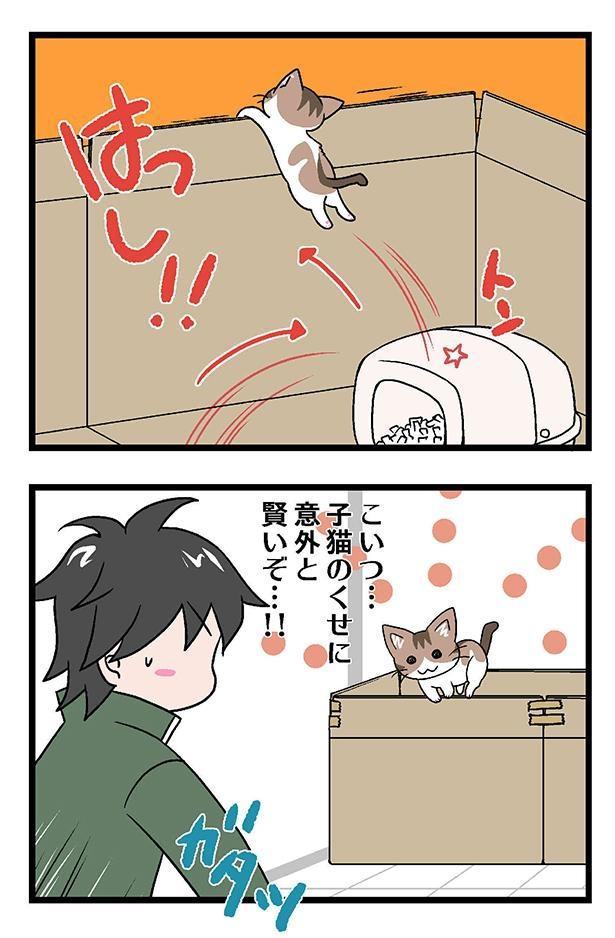 初猫物語_005_右2