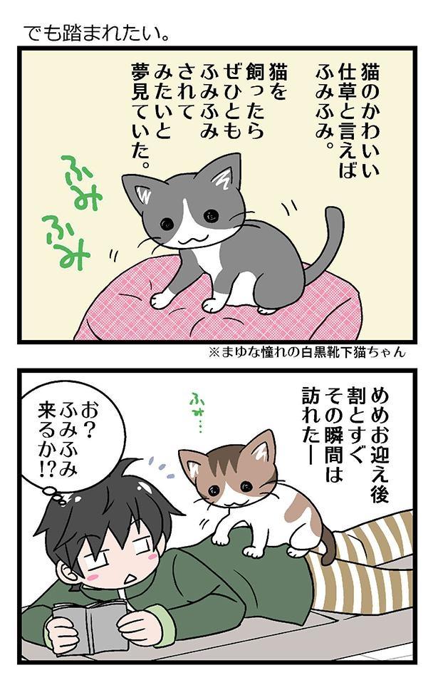 初猫物語_005_左1