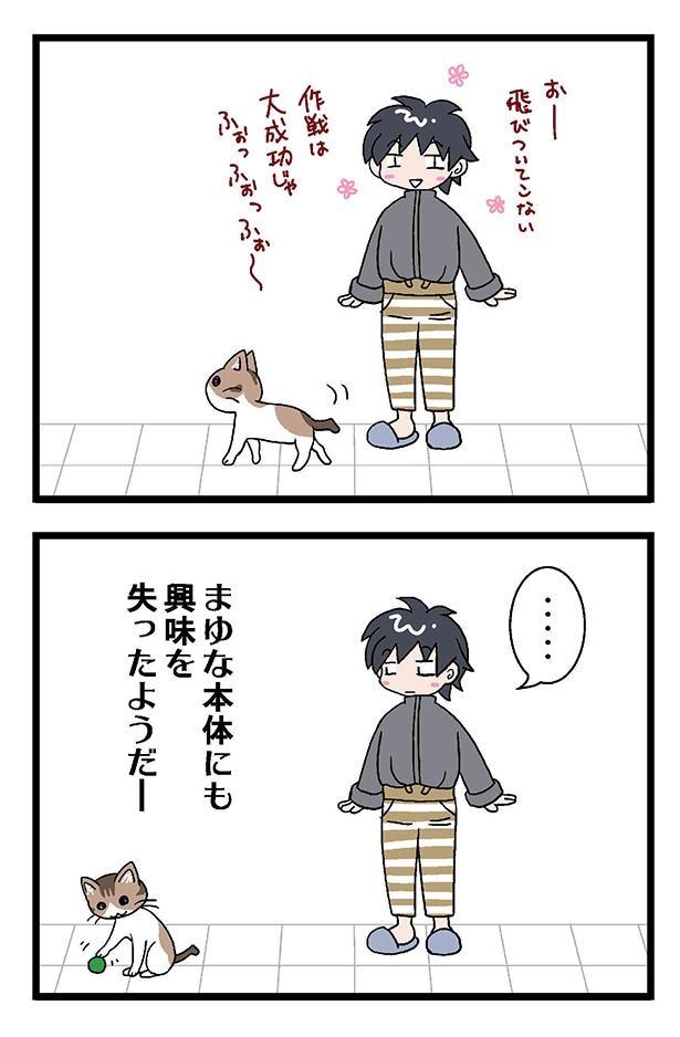 初猫物語_007_右2