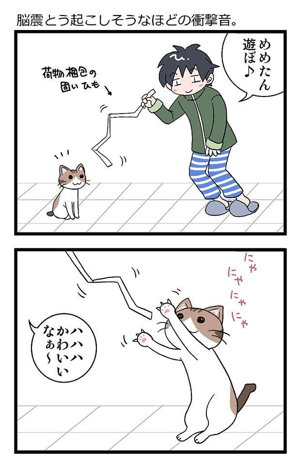 初猫物語_008_右1