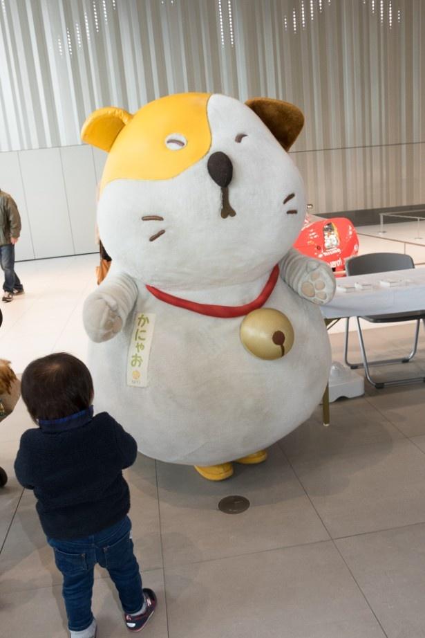神奈川県・いいにゃクリエイターの「かにゃお」。大きな丸々ボディで、神奈川のまちのいいところを発信しに来たよ?!