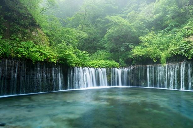 数百も流れ落ちる水のカーテン「白糸の滝」
