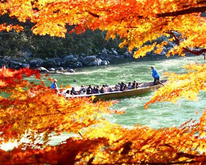 紅葉を一日満喫!秋の南信州エリアは絶景づくし!!