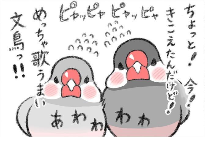モフモフな文鳥との日常を描く漫画がほっこりかわいい!飼い主の心得にも共感