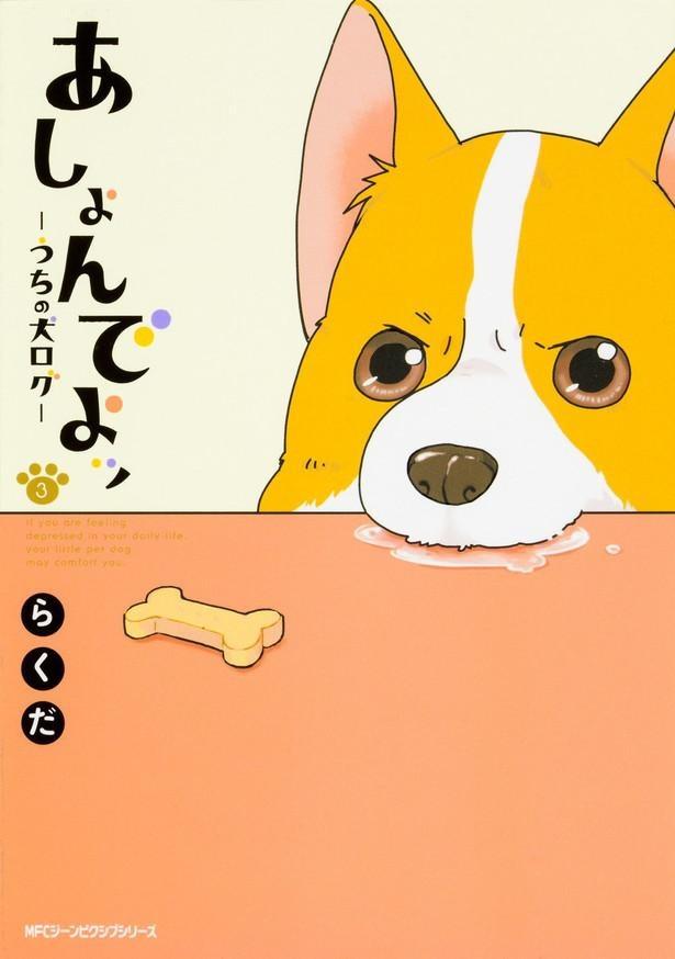 『あしょんでよッ 〜うちの犬ログ〜3』