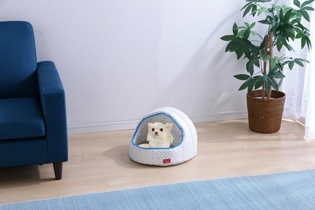 【写真を見る】夏用ベッドで愛するペットを猛暑から守りましょう!