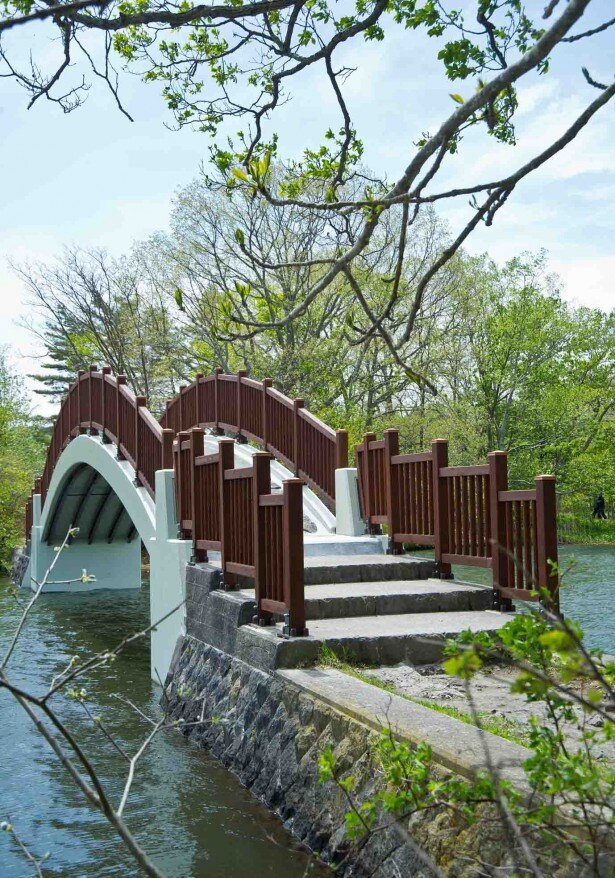 大沼湖畔遊歩道/公魚橋